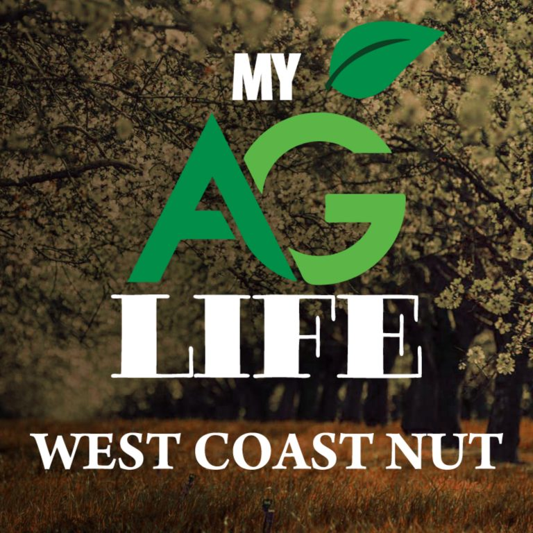 Creating Habitat for Beneficials to Control Aphids in Pecans / West Coast Nut September 2020